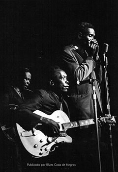 Eddie Taylor, J.L. Hooker, Big Walter Horton for the American Folk Blues Festivals