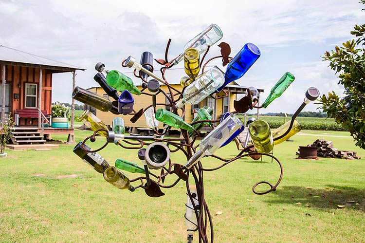 Bottle tree, Hopson Plantation,  Mississippi