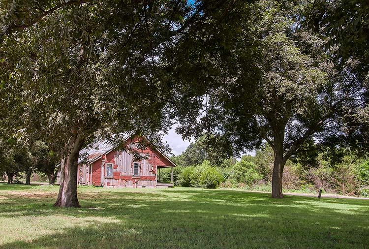 Shack, Stovall Plantation, Coahoma County, Mississippi