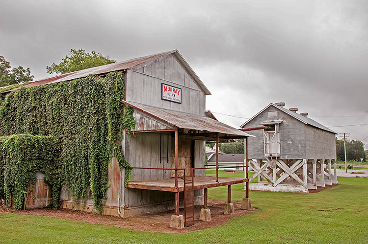Dockery Farms, Mississippi
