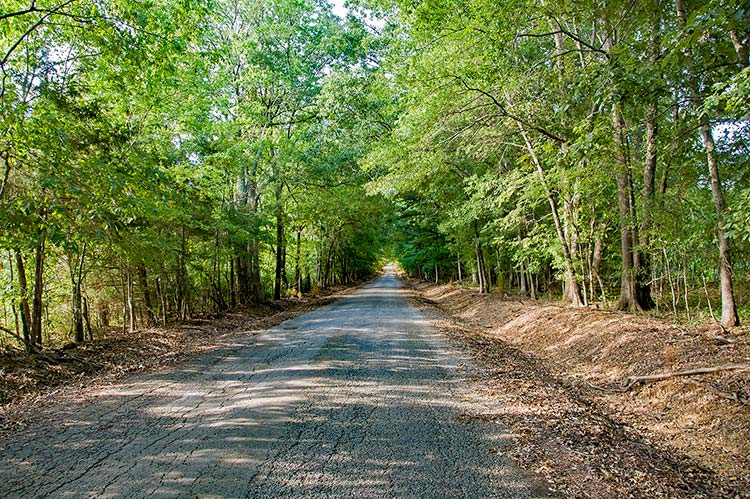 Old Highway 25 to Aberdeen, Ms